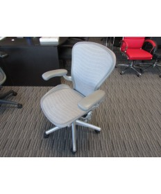 Herman Miller Aeron Chair (Titanium)